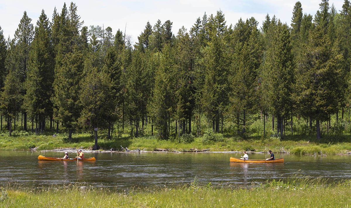 Canoeing in Henrys Fork of the Snake River